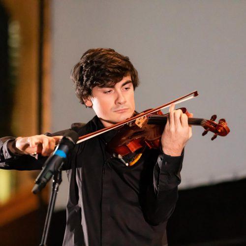 violinidsta 4